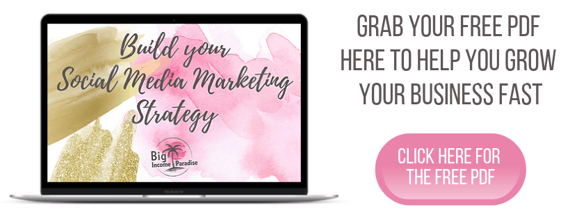 Build Your Social Media Marketing Strategy - Big Income Paradise