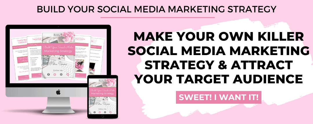 Social Media Marketing Strategy - By Big Income Paradise