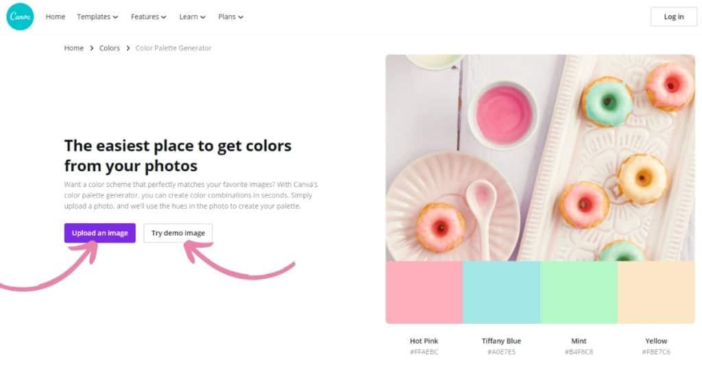 Canva Color Palette Generator Tool