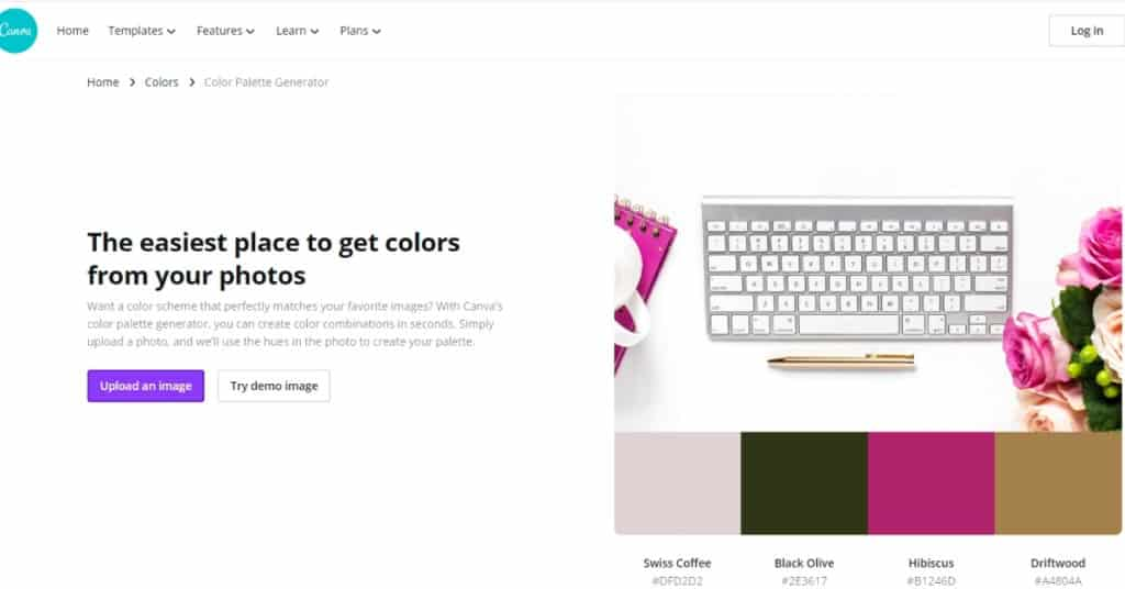 Color Palette Generator Tool From Canva