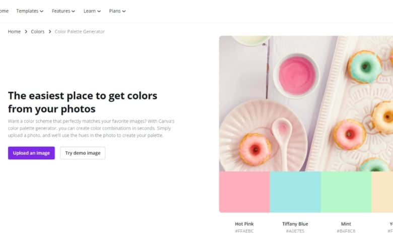 Create The Right Color Palette For Your Business With (Free) Canva