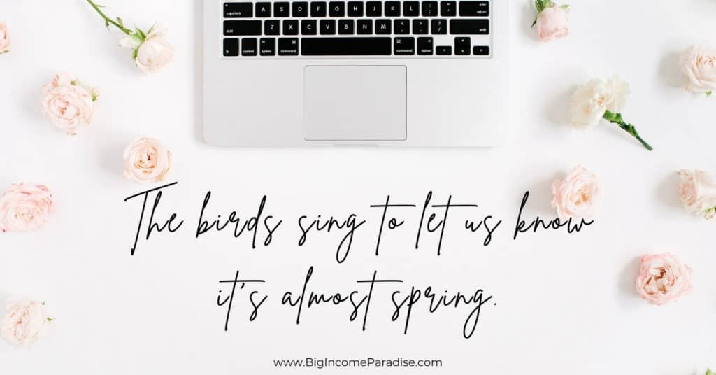 Cute Spring Instagram Captions - The birds sing to let us know it's almost spring.
