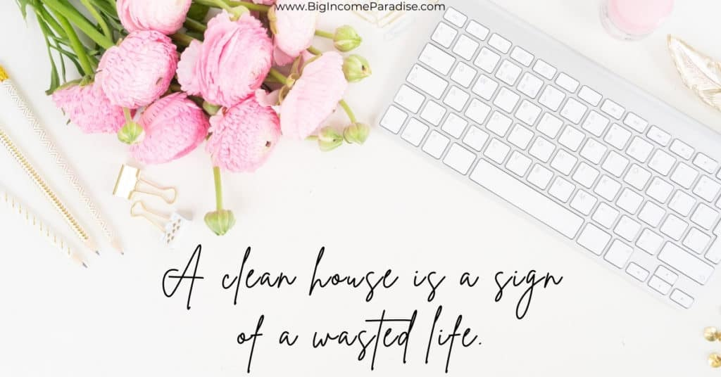 Spring Activity Captions - A clean house is a sign of a wasted life.